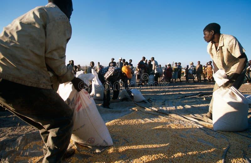 Pomoc żywieniowa w Burundi. obrazy royalty free
