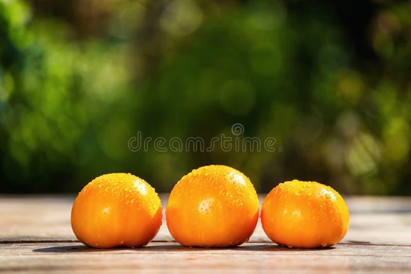 Pomodori arancio sulla tavola su un fondo verde immagini stock