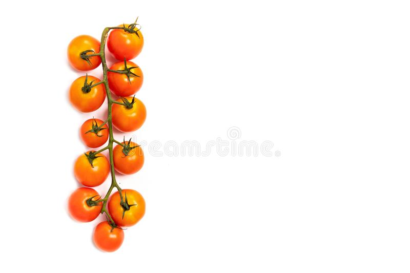 Pomodori ciliegia della vite fotografia stock