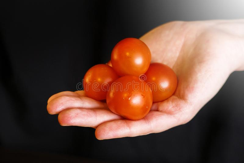 Pomodori ciliegia a disposizione della donna fotografia stock libera da diritti