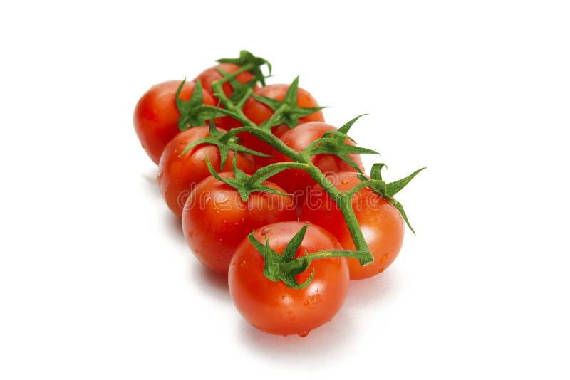 Pomodori ciliegia organici succosi sopra bianco fotografia stock