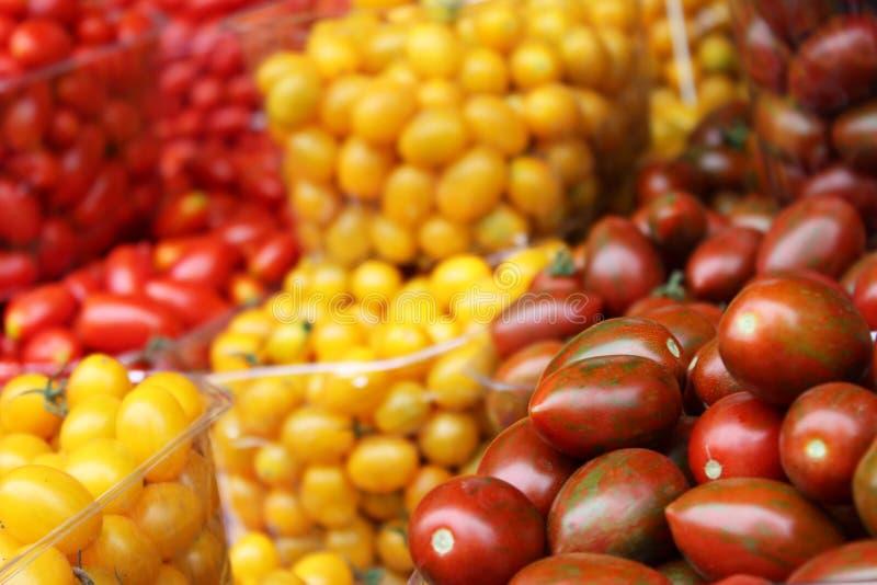 Pomodori ciliegia variopinti fotografia stock