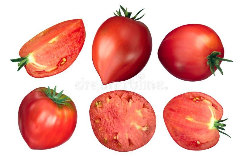 Pomodori del cuore del bue di Oxheart, vista superiore illustrazione di stock