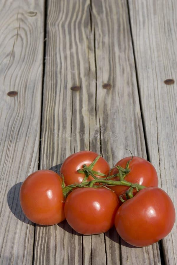 Download Pomodori del giardino fotografia stock. Immagine di coltura - 7305498