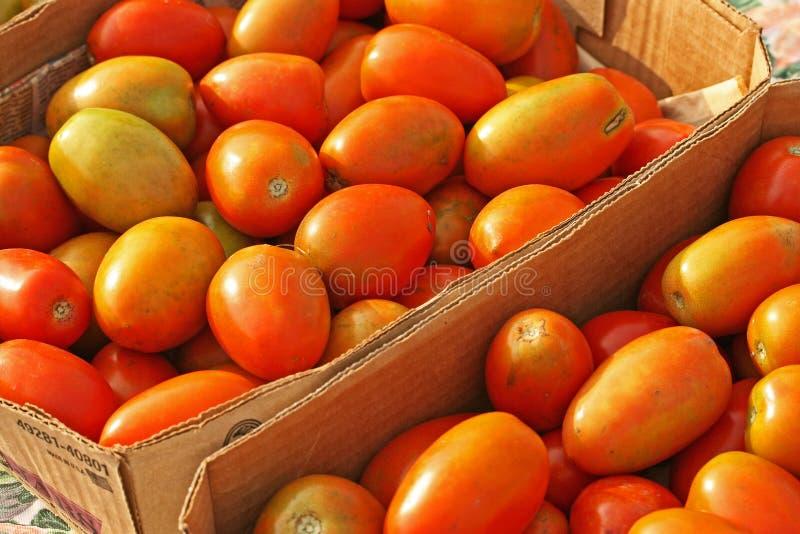 Pomodori del mercato dei coltivatori immagini stock