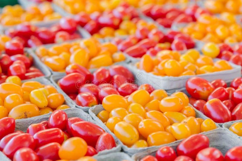 Pomodori dell'uva gialla e rossa immagine stock
