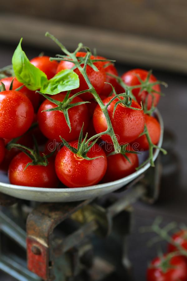 Pomodori di ciliegia organici fotografia stock libera da diritti