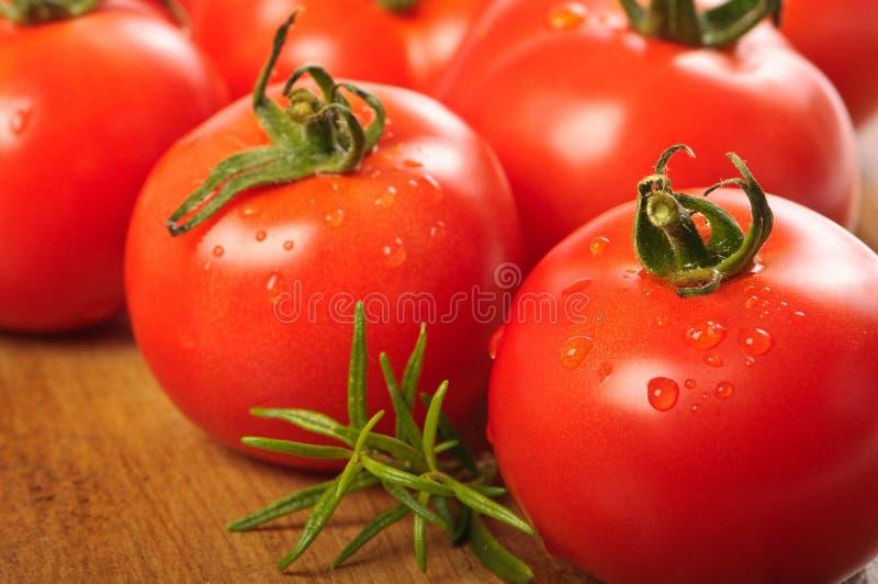 Pomodori di recente lavati fotografia stock