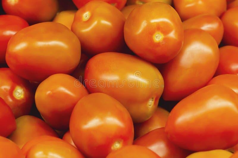 Pomodori di saladette di Barcelo impilati per la vendita al dettaglio fotografia stock libera da diritti