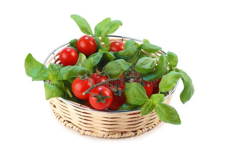Pomodori e basilico fotografia stock libera da diritti