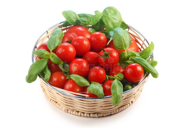 Pomodori e basilico immagine stock libera da diritti