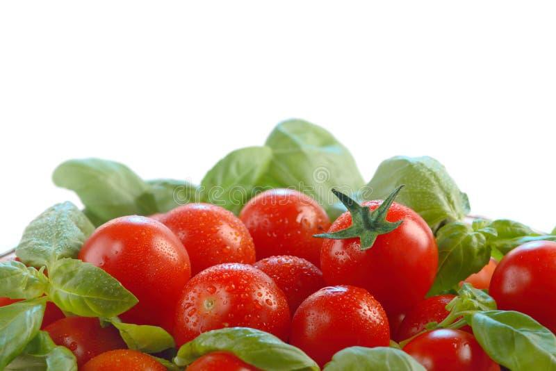 Pomodori e basilico immagine stock