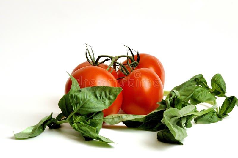 Pomodori e basilico grezzi immagini stock