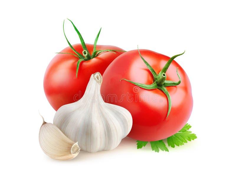 Pomodori ed aglio isolati immagini stock libere da diritti