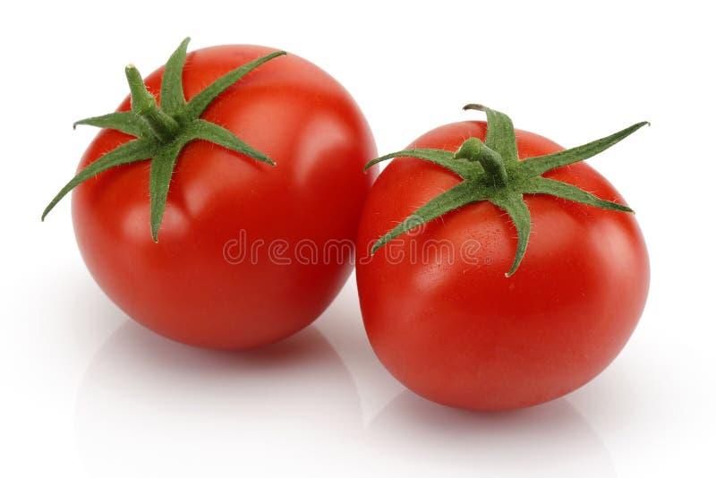 Pomodori freschi immagini stock libere da diritti