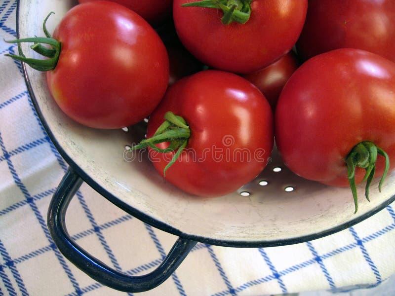 Download Pomodori Freschi Del Giardino. Immagine Stock - Immagine di pasto, alimento: 203695