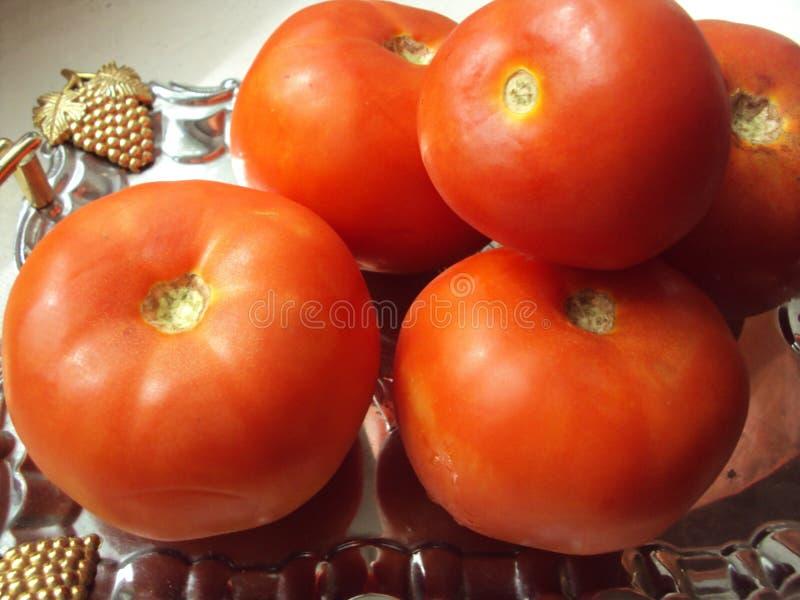 Pomodori freschi rossi immagini stock