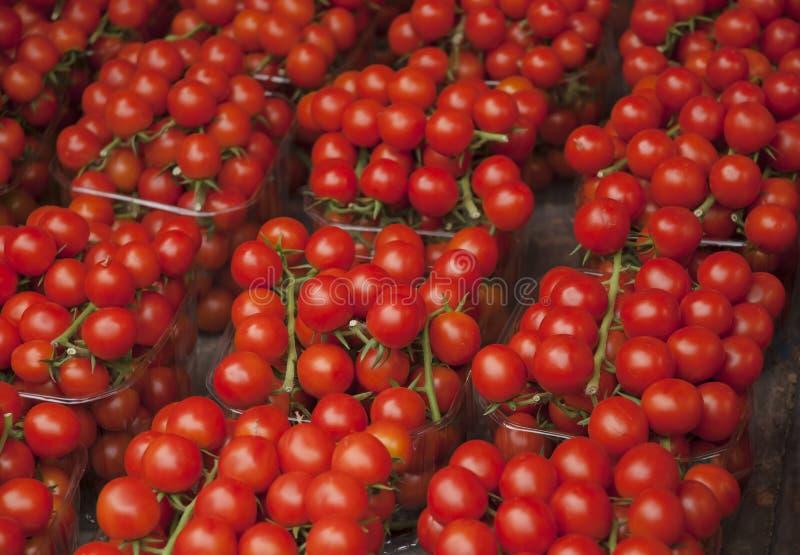Pomodori freschi rossi Un mucchio dei pomodori Azienda agricola di agricoltura del mercato del vassoio di estate in pieno dei pom fotografia stock libera da diritti