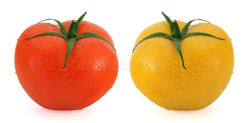 Pomodori freschi - rosso e giallo fotografia stock