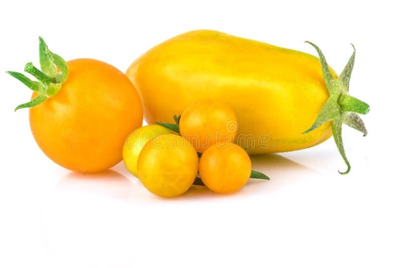 Pomodori gialli sopra bianco immagine stock
