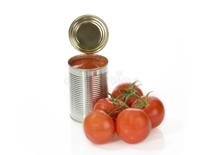 Pomodori inscatolati fotografie stock libere da diritti