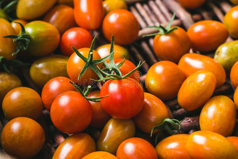Pomodori organici freschi Primo piano immagini stock libere da diritti