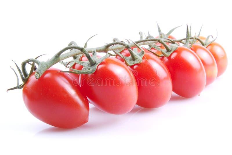 Pomodori rossi immagini stock