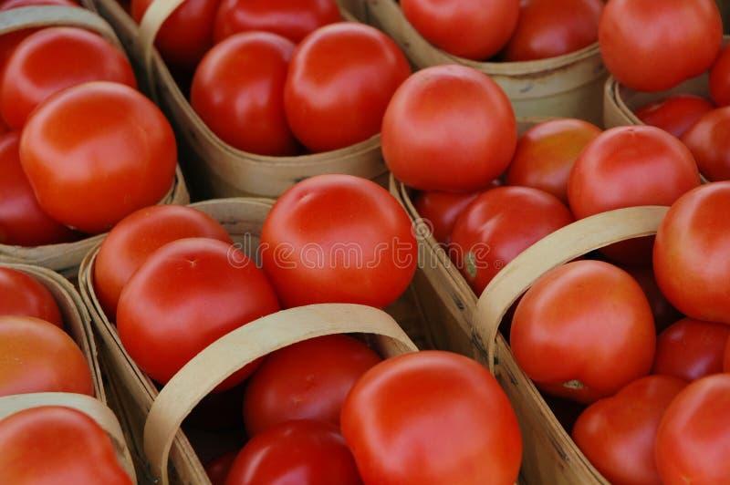 Pomodori rossi 2 immagine stock