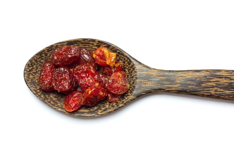 Pomodori seccati al sole fotografia stock