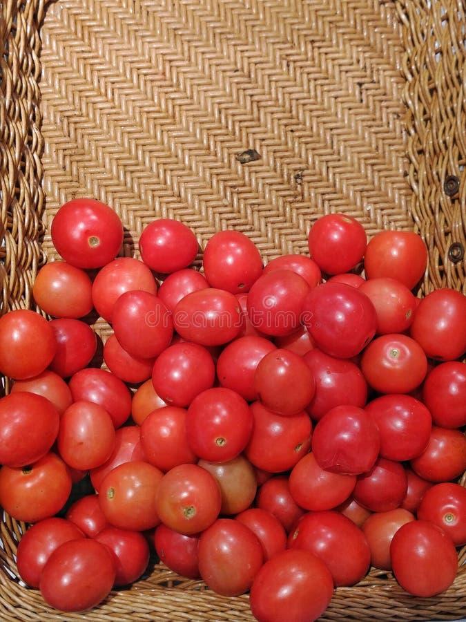 Pomodori in un canestro fotografia stock