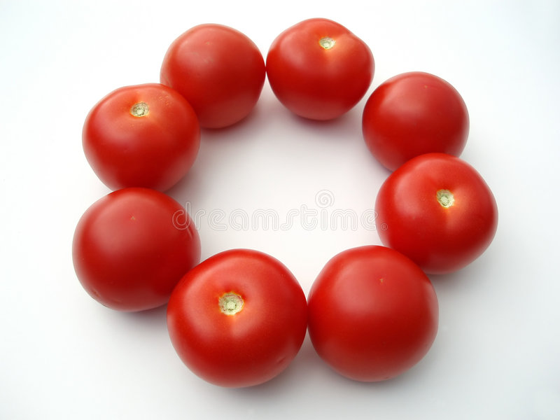Pomodori in un cerchio immagine stock