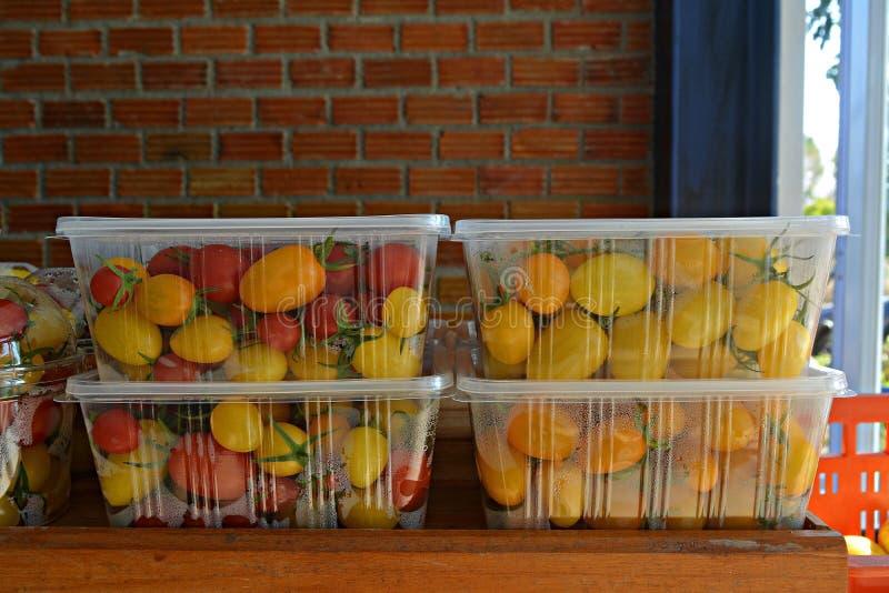 Pomodori in una scatola di plastica fotografia stock