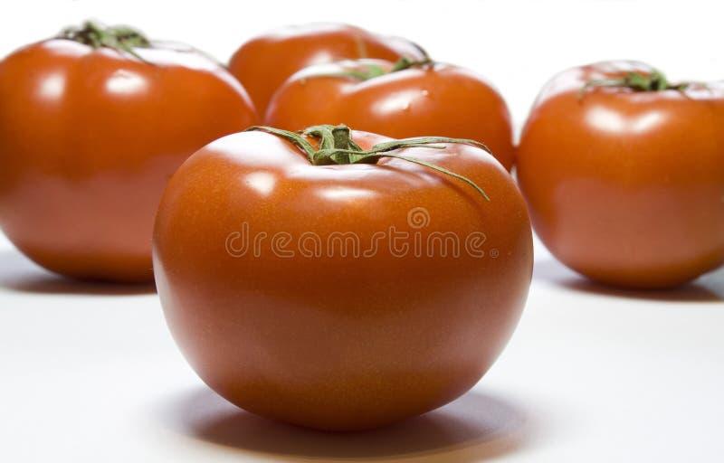 Download Pomodoro fotografia stock. Immagine di frutta, brillantemente - 7313032
