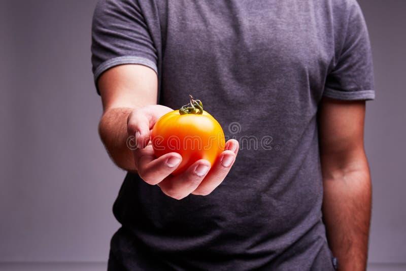 Pomodoro casalingo delizioso in una mano del ` s dell'uomo immagine stock