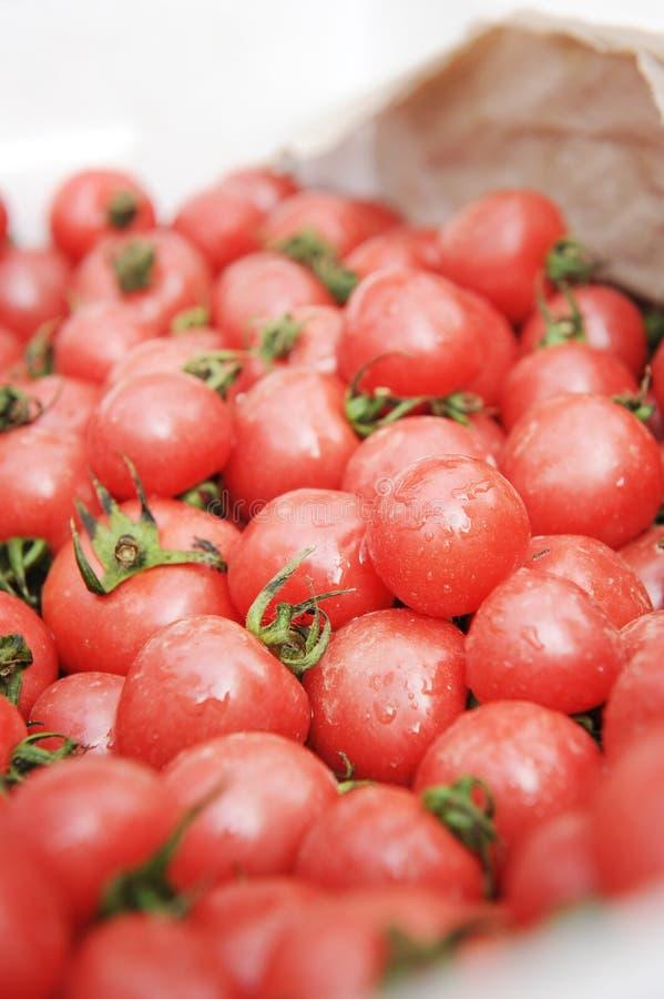Pomodoro di ciliegia fotografia stock libera da diritti