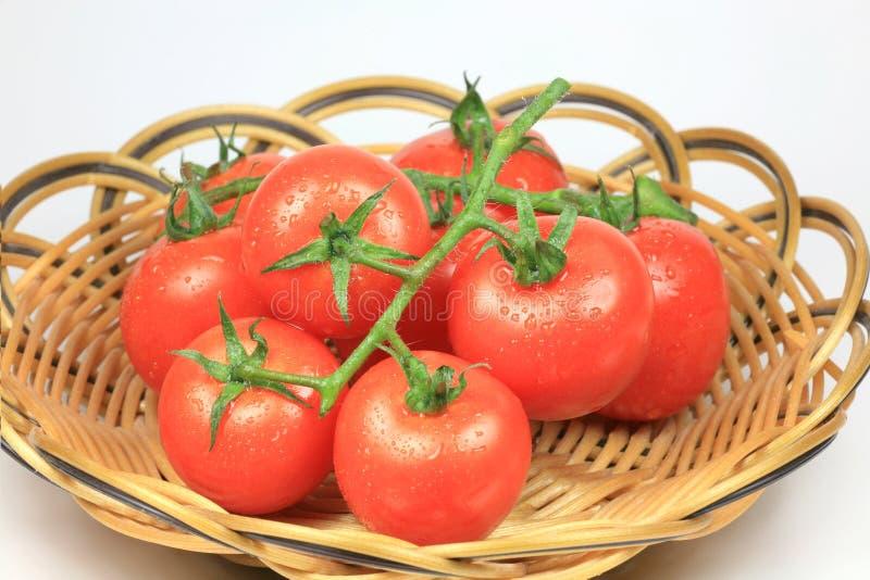 Pomodoro di ciliegia in cestino fotografia stock libera da diritti