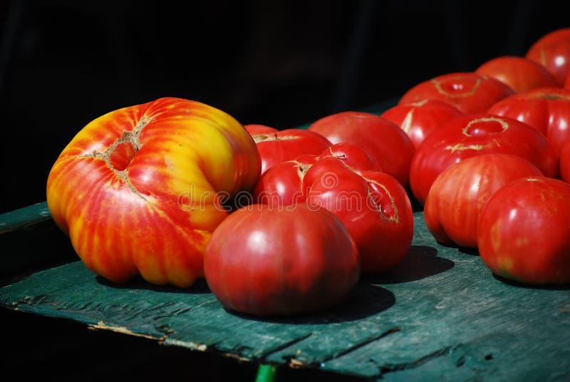 Pomodoro di Heirloom fotografia stock libera da diritti
