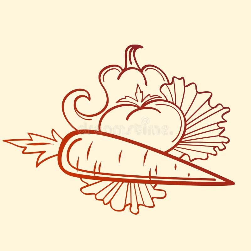 Pomodoro e carota del pepe fotografia stock libera da diritti