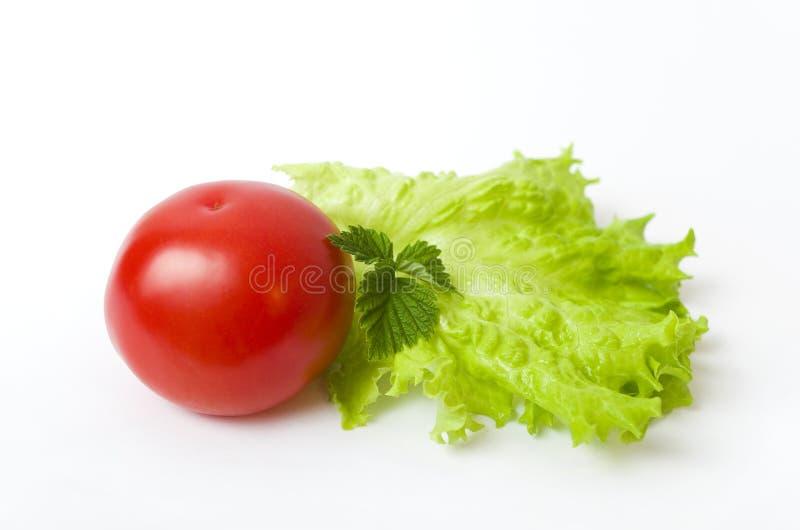 Pomodoro e lattuga rossi. fotografia stock libera da diritti