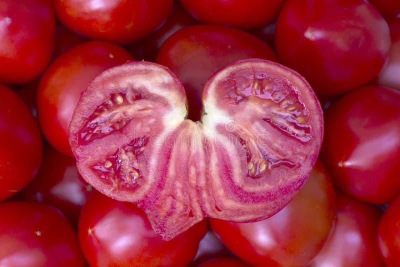 Pomodoro in forma di cuore fotografie stock