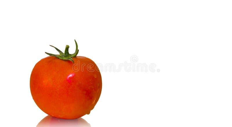 Pomodoro fresco immagini stock