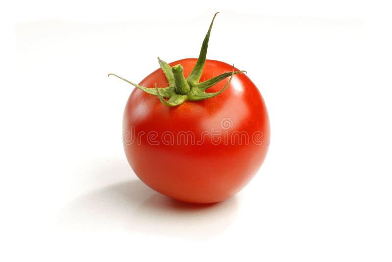 Pomodoro fresco maturo fotografia stock
