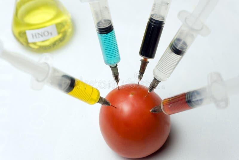 Pomodoro modificato con la siringa su un fondo bianco fotografia stock