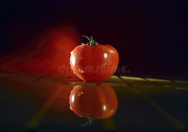 Pomodoro nell'illuminazione unica immagini stock