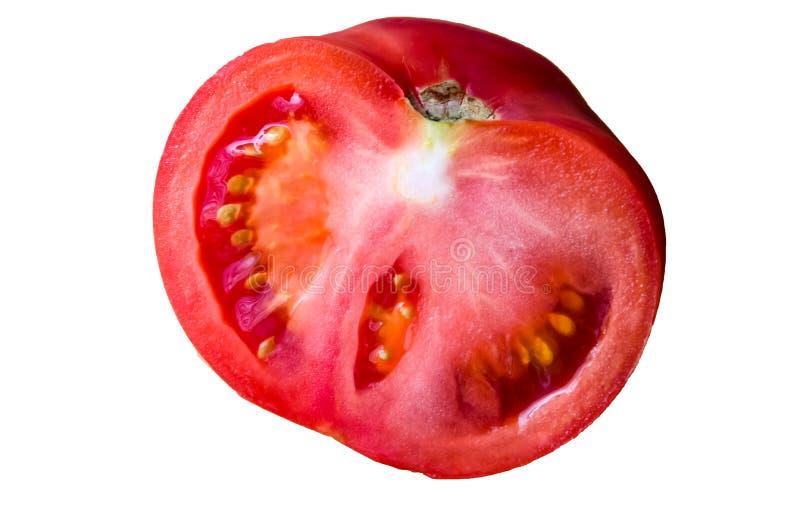 Pomodoro rosa isolato su fondo bianco immagine stock libera da diritti