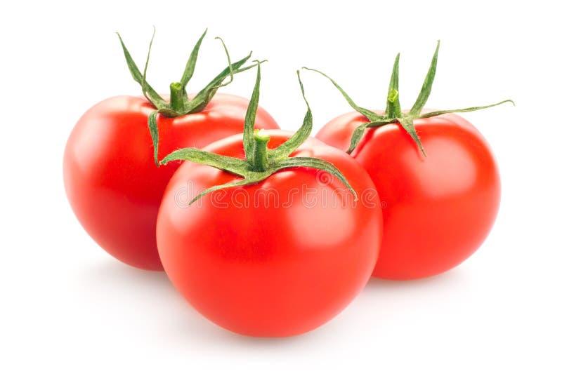 Pomodoro rosso su fondo bianco fotografia stock libera da diritti