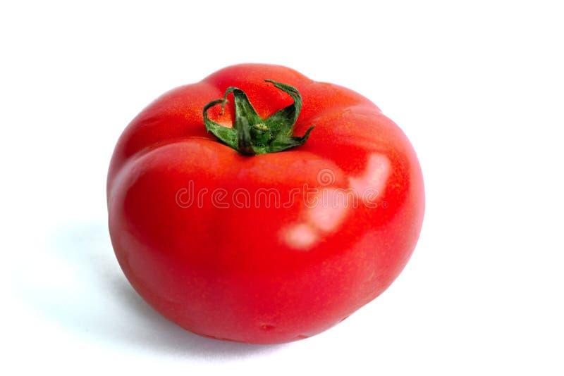 Pomodoro rosso su una priorità bassa bianca immagini stock
