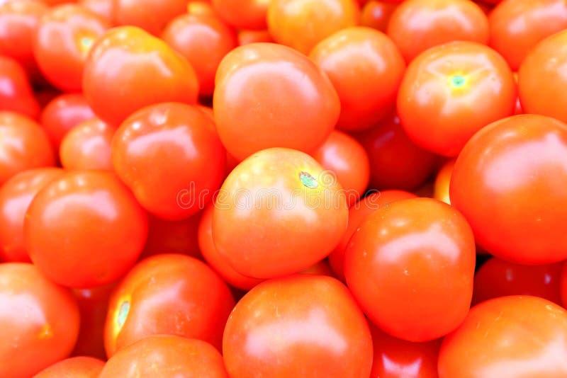 Pomodoro sulla vendita fotografie stock