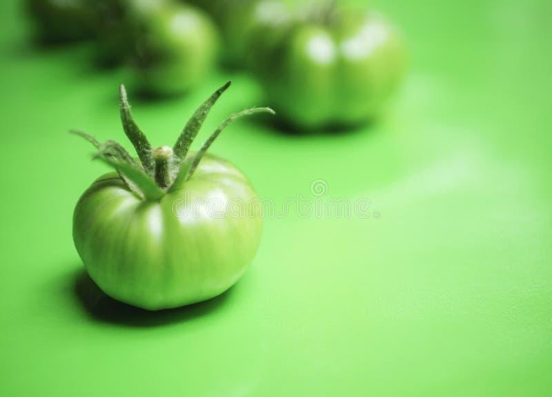 Pomodoro verde su fondo verde immagini stock