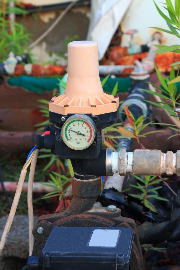 Pompa i rośliny obrazy stock